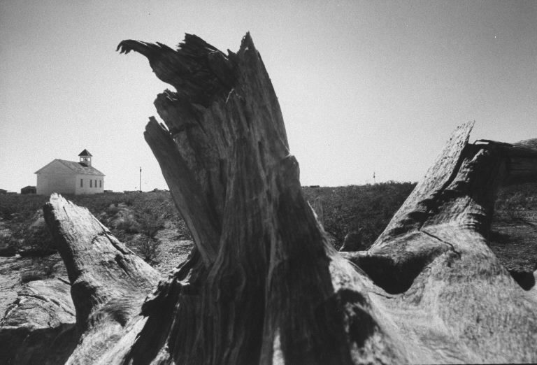 Weathered tree stump in desert near Mentone, Texas. (Photo by Vernon Merritt/The LIFE Picture Collection © Meredith Corporation)