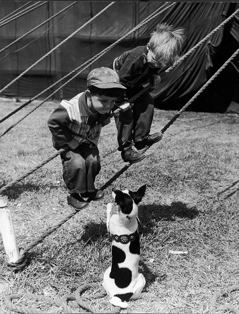 Little boys outside circus tent playing with a dog. (Photo by Nina Leen/The LIFE Picture Collection © Meredith Corporation)