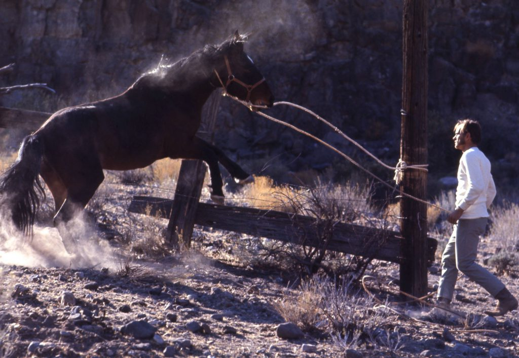 Mustang, 1968.