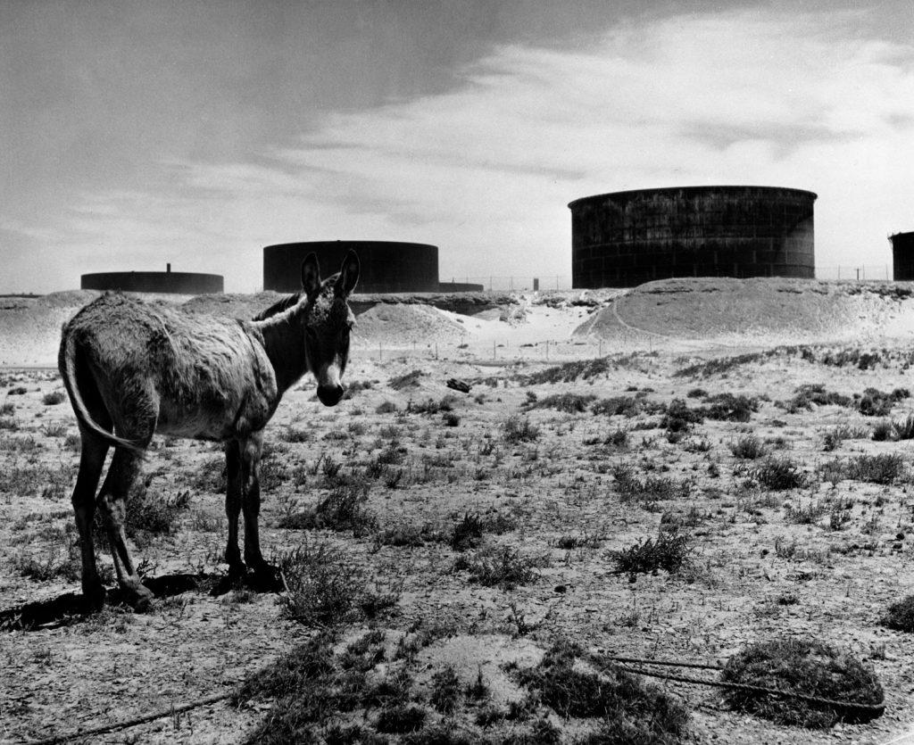 Landscape surrounding a Bahrain oil refinery, 1945.