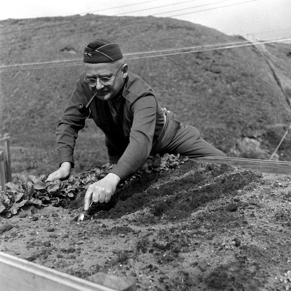 Gardening with a teaspoon, Aleutian Campaign, Alaska, 1943.