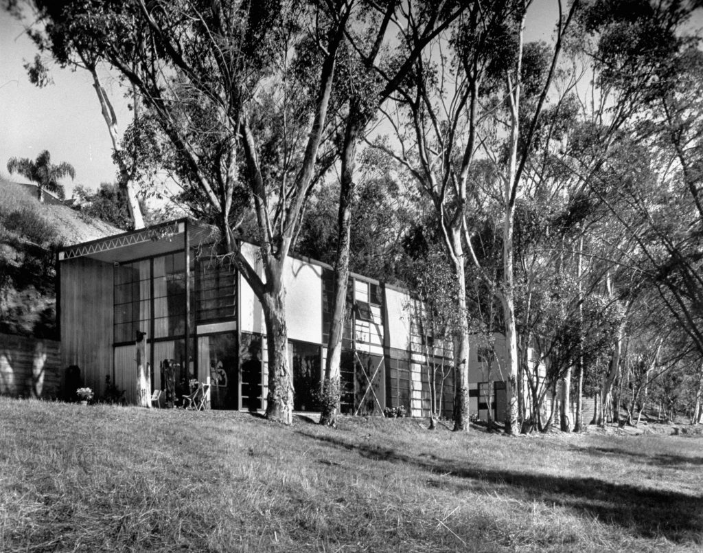 Exterior view of Eames' house shows how it nudges into a hillside, is fronted by eucalyptus trees. The studio-office is at right, joined to house by a patio.