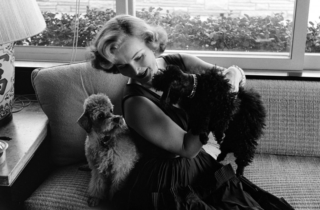 Zsa Zsa Gabor with her dogs, Harvey Hilton (grey) and Farouk (black), California, 1951.
