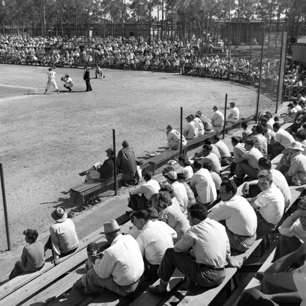 Brooklyn Dodger rookies and prospects in a spring training scrimmage, Vero Beach, Fla., 1948.