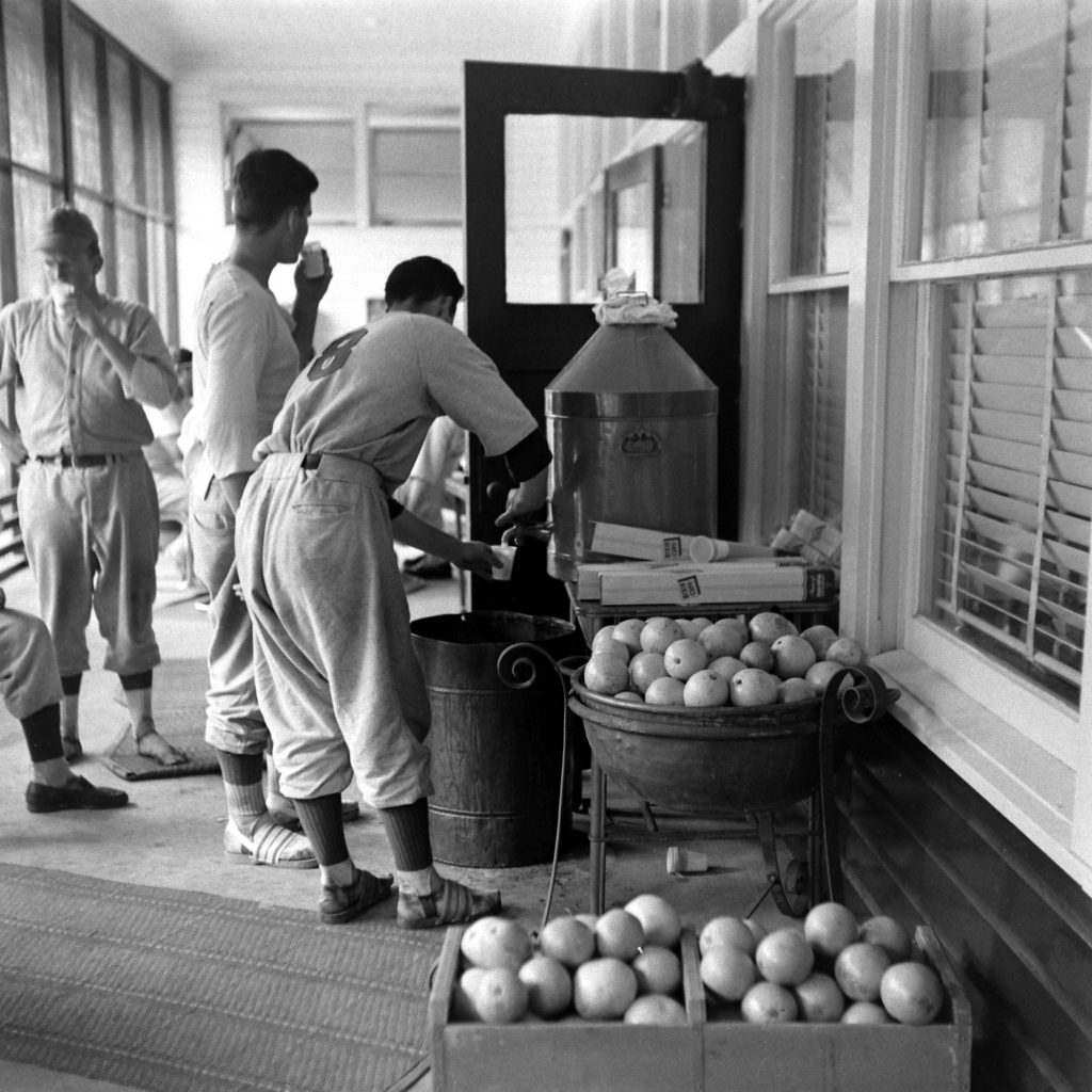 Players drink fresh orange juice during spring training at Dodgertown, Vero Beach, Fla., 1948.