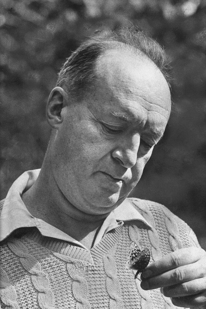 Vladimir Nabokov looks at a butterfly, Ithaca, N.Y., 1958.