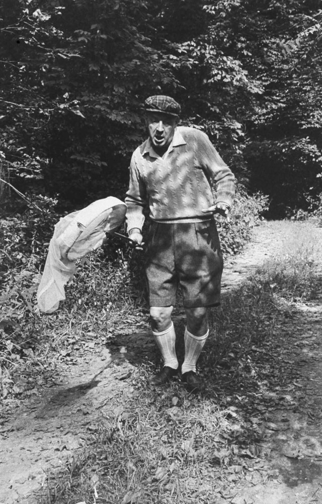 Vladimir Nabokov hunts butterflies, Ithaca, N.Y., 1958.