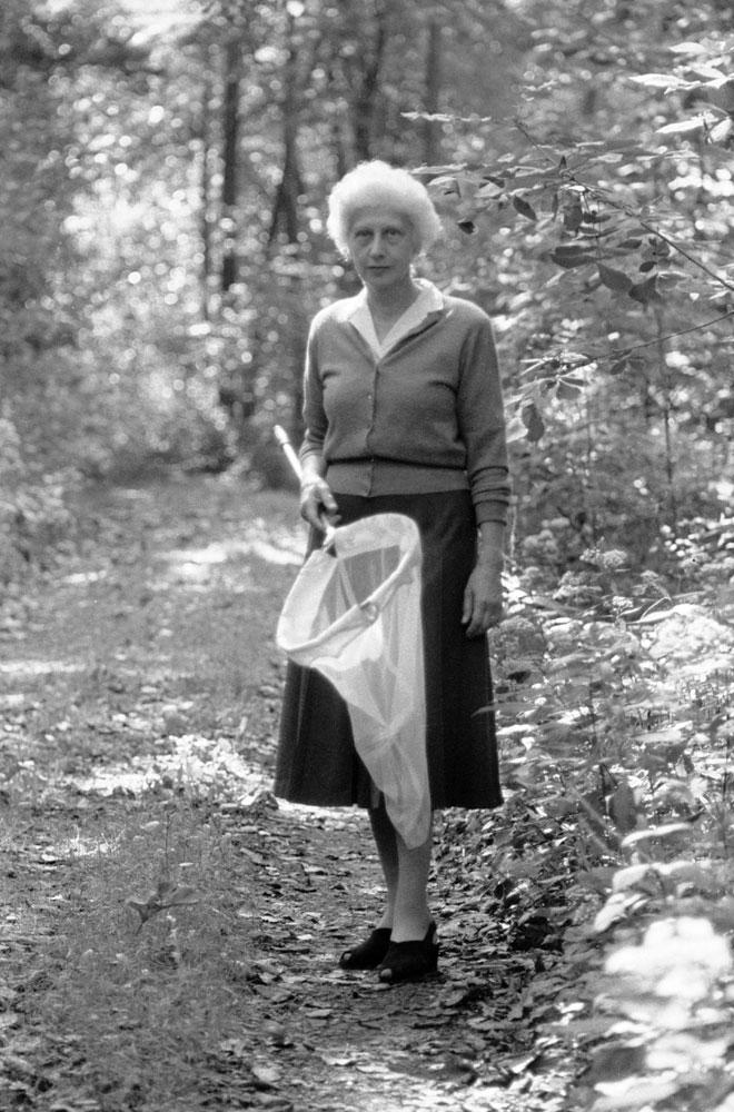 Vera Nabokov, wife of Vladimir Nabokov, with a butterfly net, Ithaca, N.Y., 1958.
