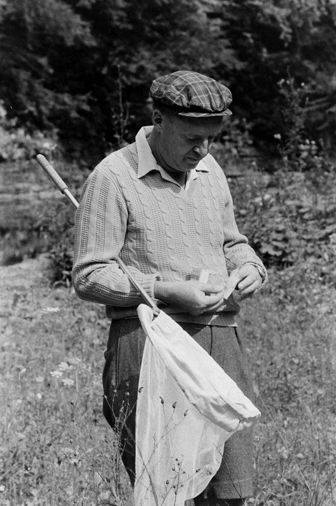 Vladimir Nabokov, Ithaca, N.Y., 1958.