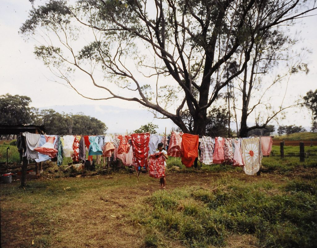Washing hung out to dry, Hawaii, 1959.