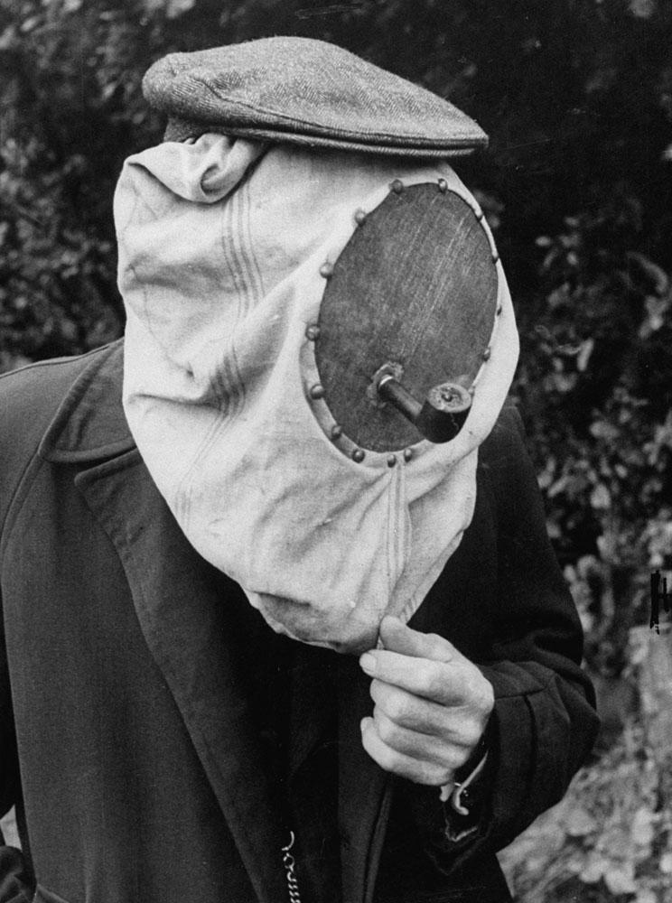 Beekeeper, Netherlands, 1956