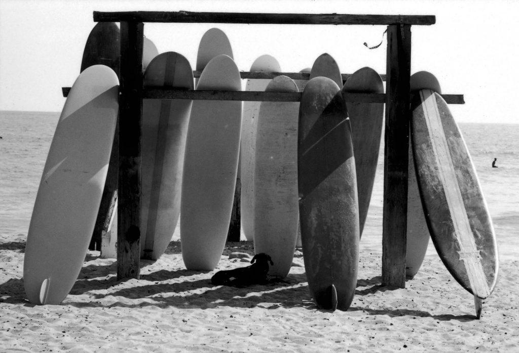 Surfing, Malibu, Calif., 1961