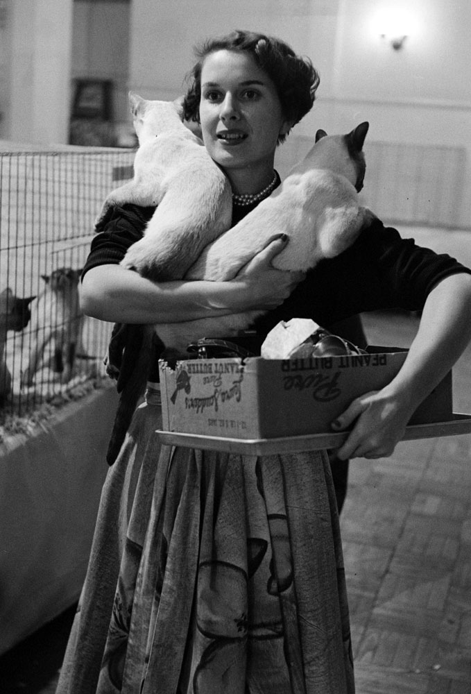 Cat show, Los Angeles, Calif., 1952.