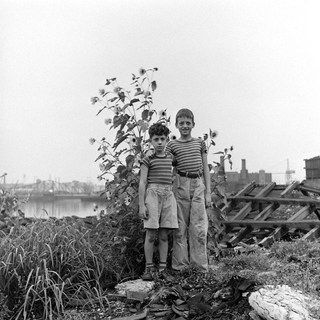 Unidentified boys, Brooklyn, 1946.