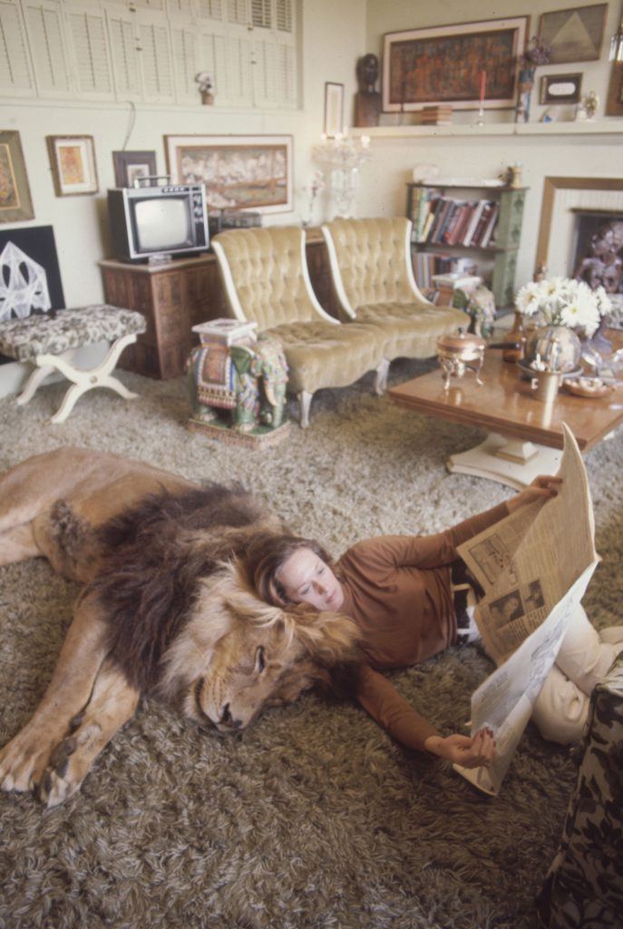 Tippi Hedren reading a newspaper beside Neil the pet Lion, in her California home.