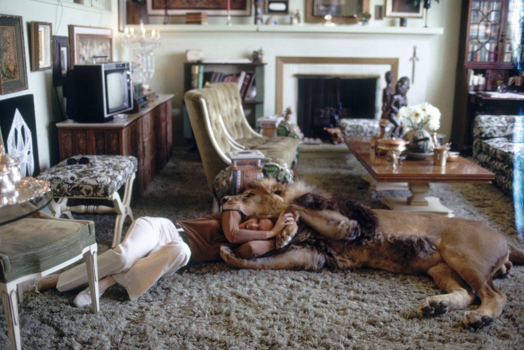 Tippi Hedren wrestling her pet lion, 1971.