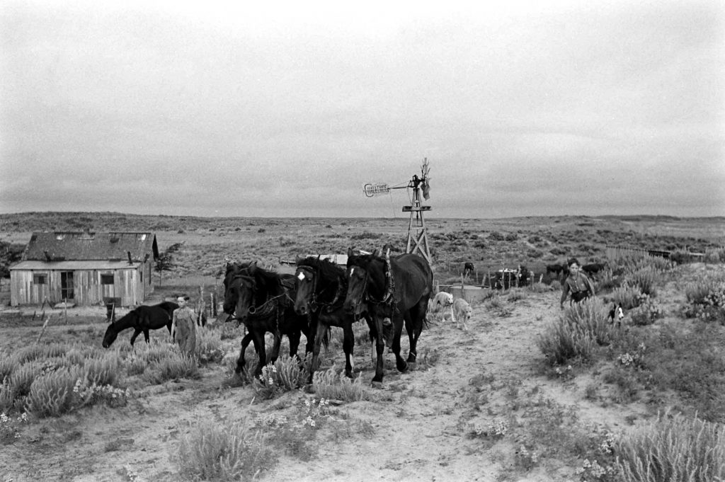Oklahoma farm, 1942.