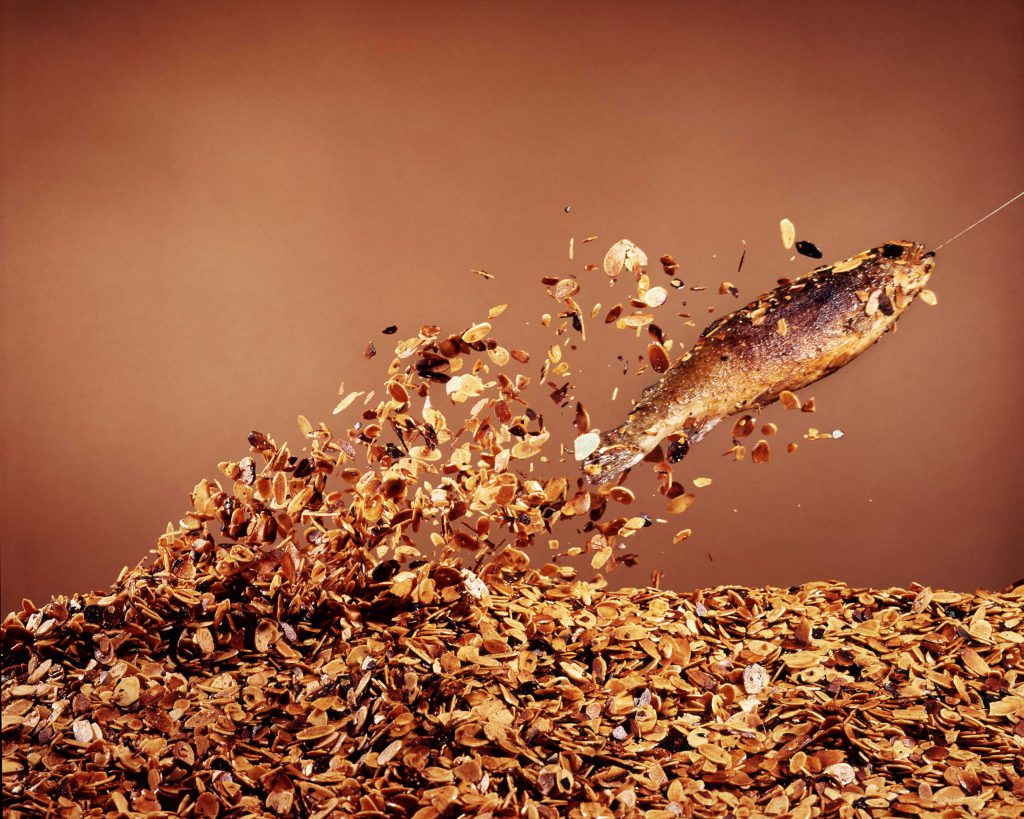 """A trout """"flies"""" out of a bed of almonds in preparation for Trout Amandine, 1964."""