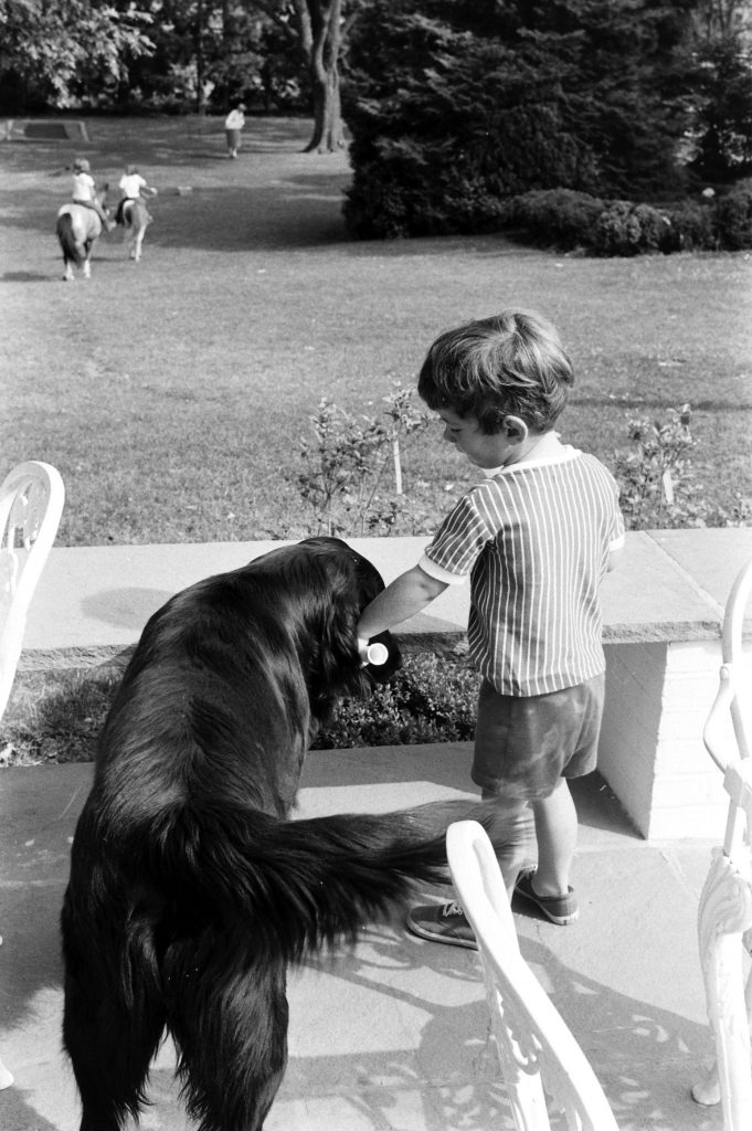 John Kennedy Jr., who plays at Hickory Hill often, hands Braumas, a Newfoundland, rubber bone as he says hello. In distance, sister and cousin ride ponies.