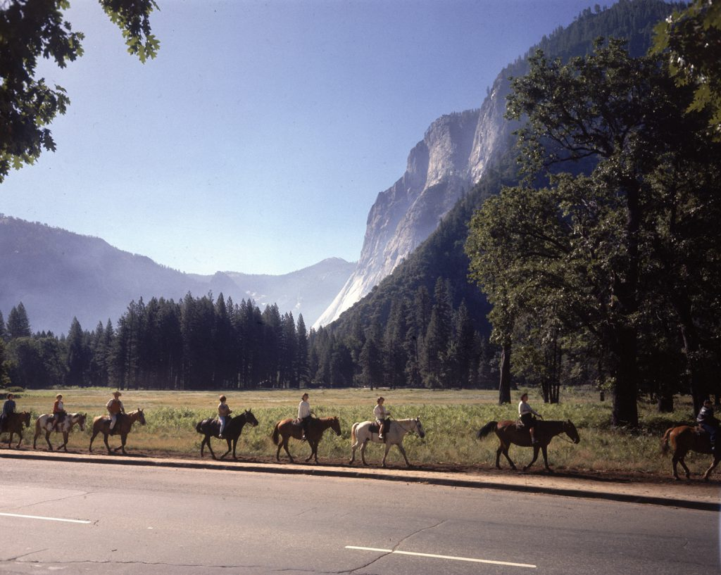 A horseback ride in Yosemite National Park, 1962.