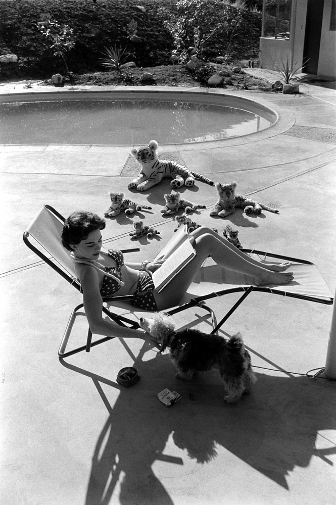 Natalie Wood sits poolside with a poodle in 1956