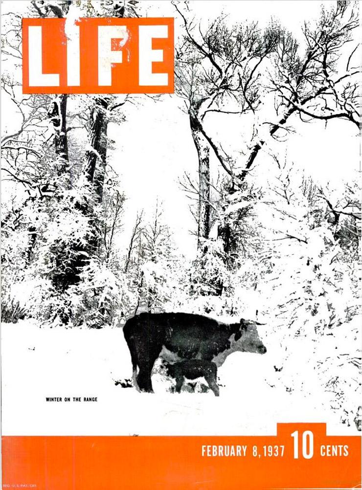 February 8, 1937 LIFE Magazine cover