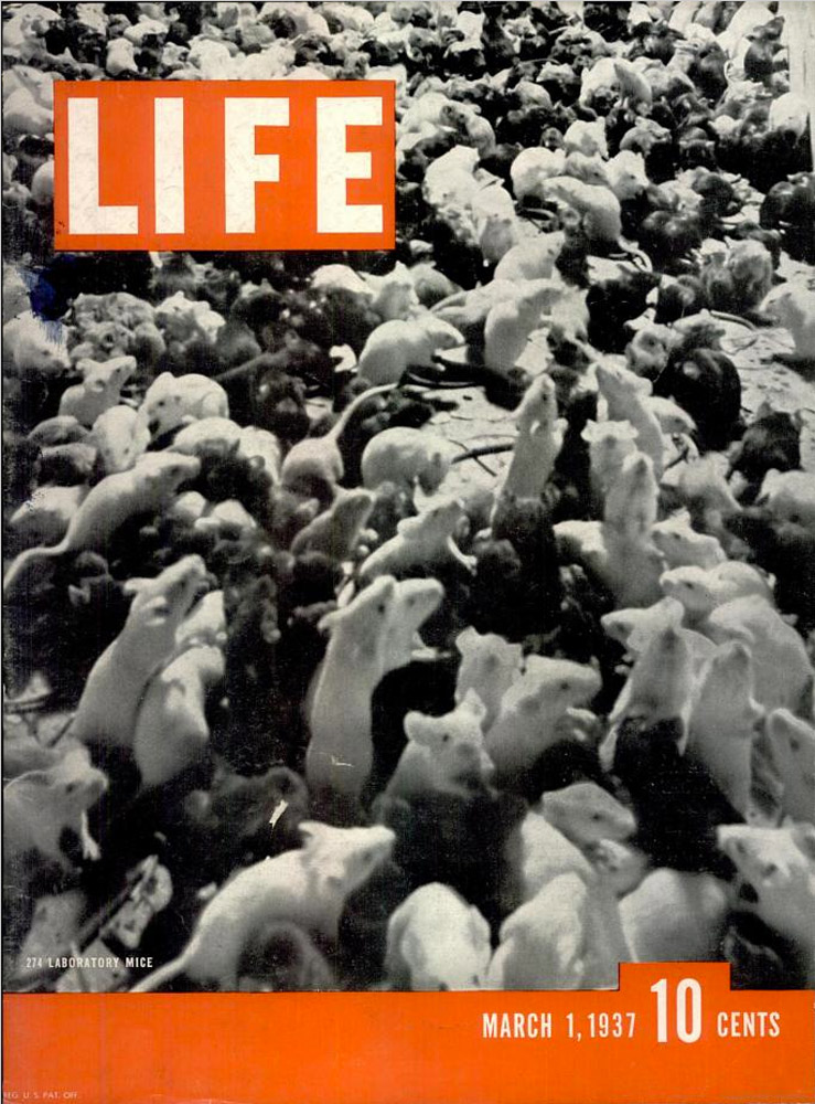 March 1, 1937 LIFE Magazine cover