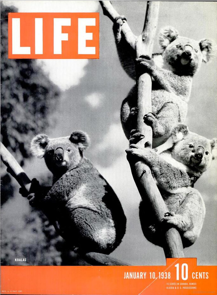 January 10, 1938 LIFE Magazine cover