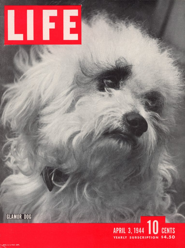 April 3, 1944 LIFE Magazine cover