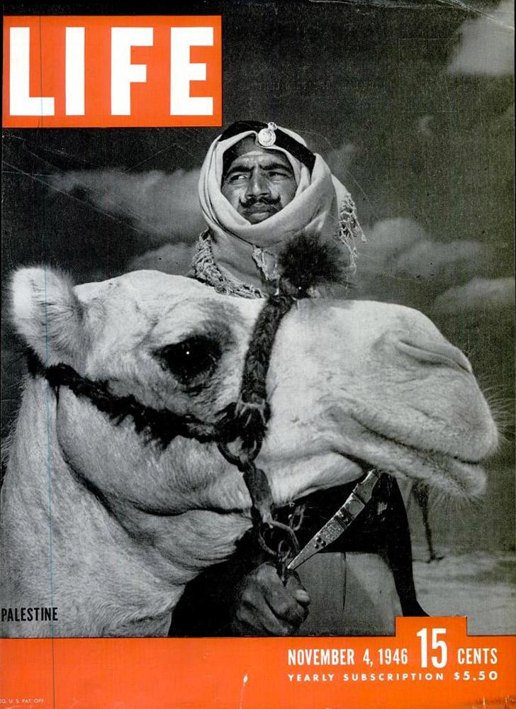 November 4, 1946 LIFE Magazine cover