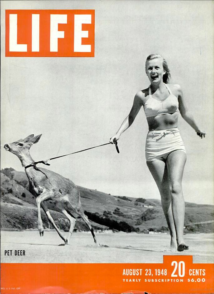 August 23, 1948 LIFE Magazine cover