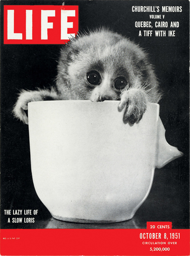 October 8, 1951 LIFE Magazine cover