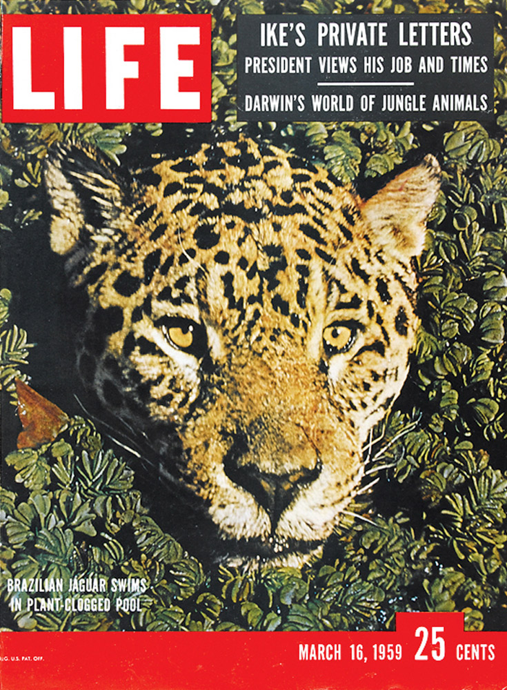 March 16, 1959 LIFE Magazine cover