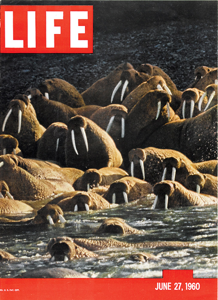 June 27, 1960 LIFE Magazine cover