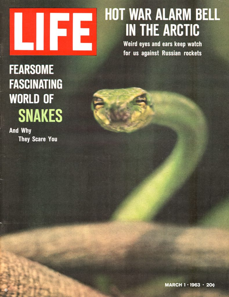 March 1, 1963 LIFE Magazine cover