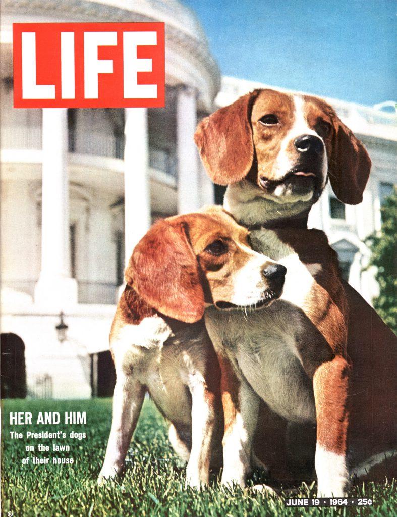 June 19, 1964 LIFE Magazine cover