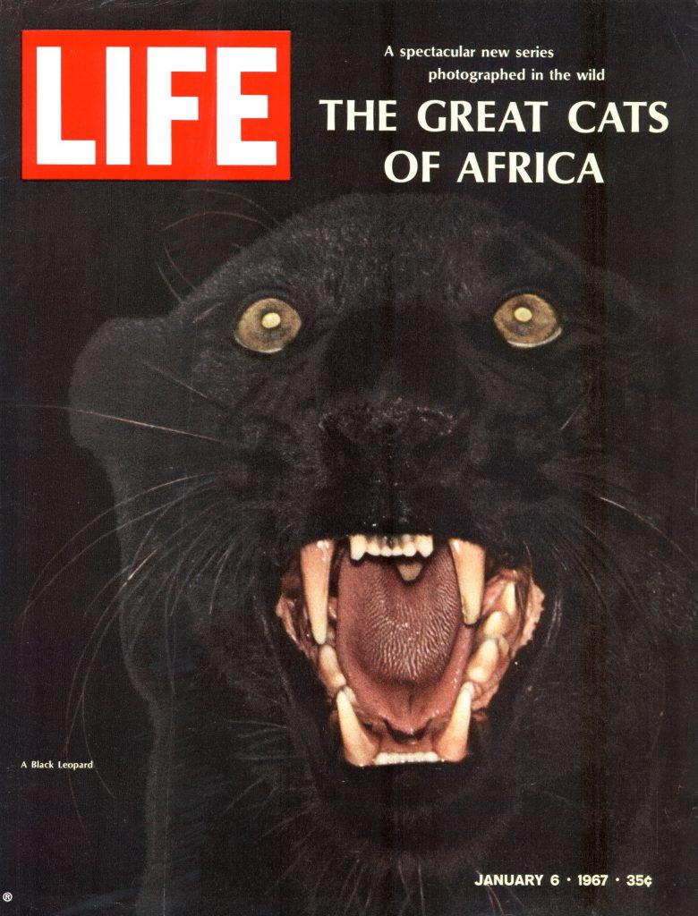 January 6, 1967 LIFE Magazine cover
