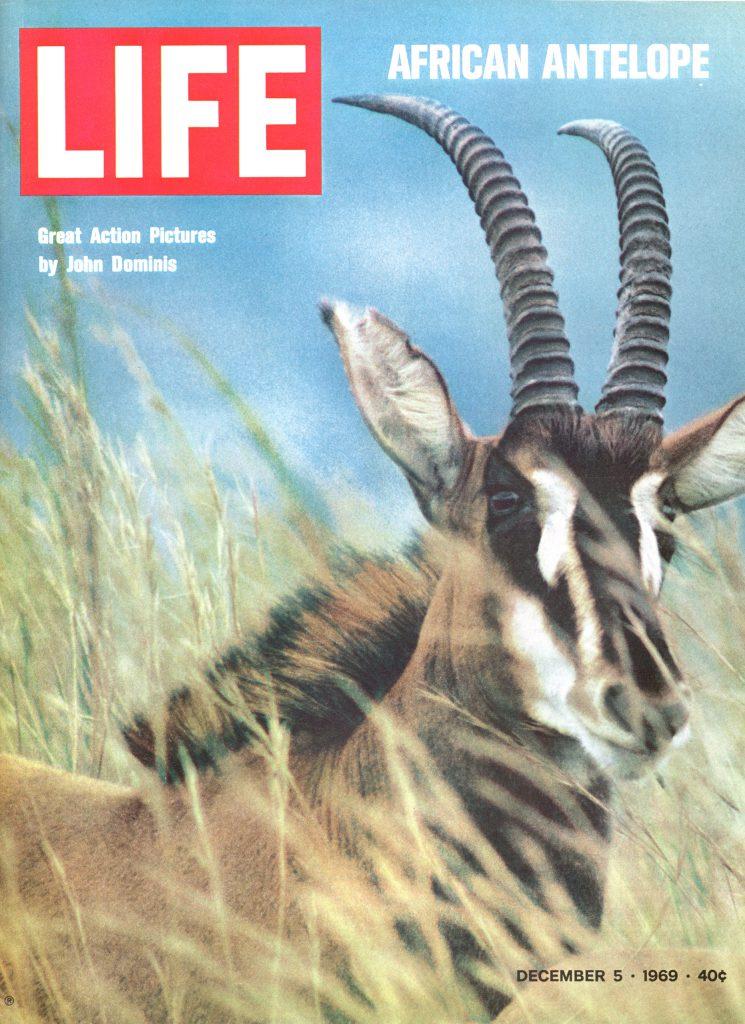 December 5, 1969 LIFE Magazine cover
