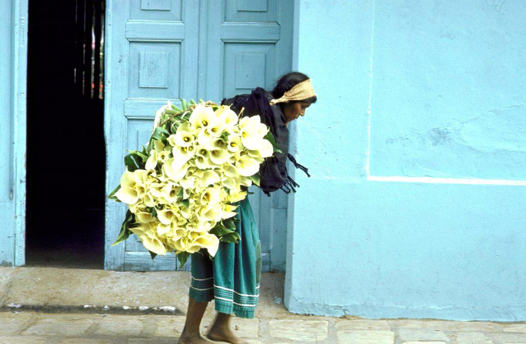Lily seller, San Cristóbal de las Casas.