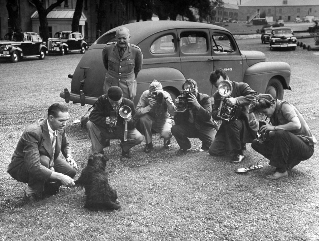 Photographers taking pictures of FDR's dog, Fala, during the Quebec Conference meeting. 1943.
