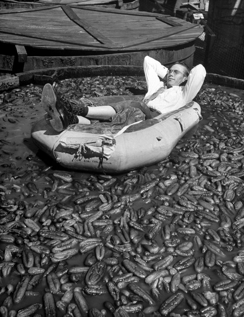 Mr. Dill Pickle of Mississippi reclines happily in a rubber boat amid 204,681 soggy pickles.
