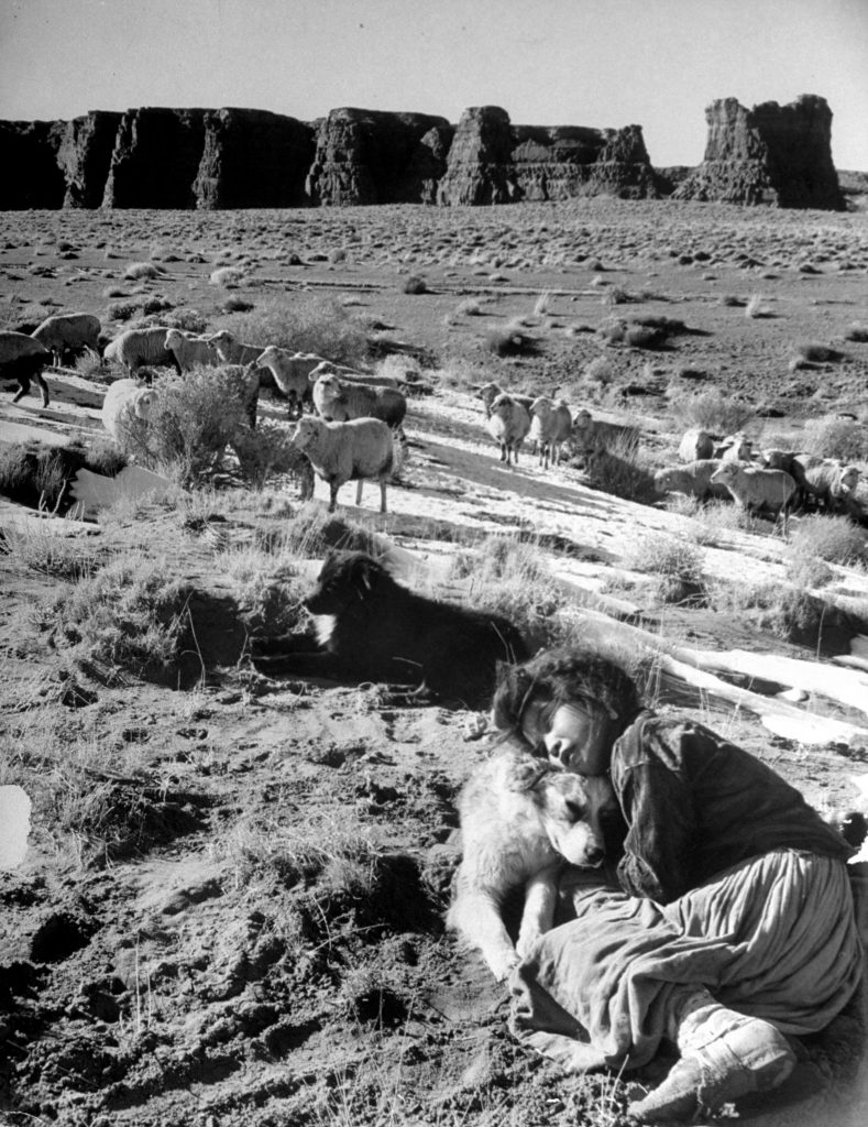 A Navajo girl hugging her dog while she watches the sheep on the high plateau.