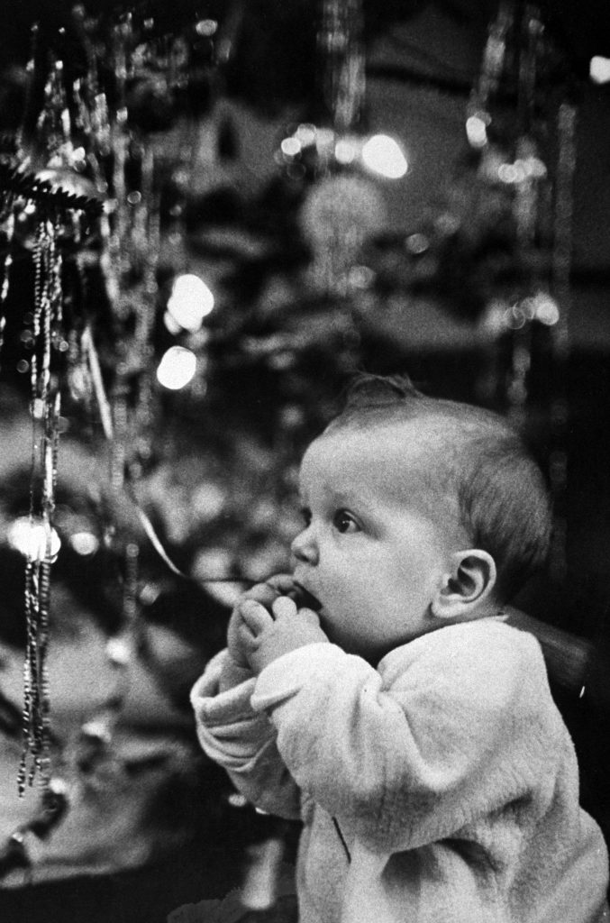 Baby tasting a piece of metallic tinsel dangling from a Christmas tree, 1954.