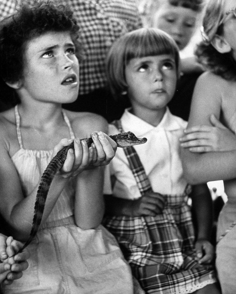 Children visiting at Brookfield Children's Zoo. Chicago, 1953.