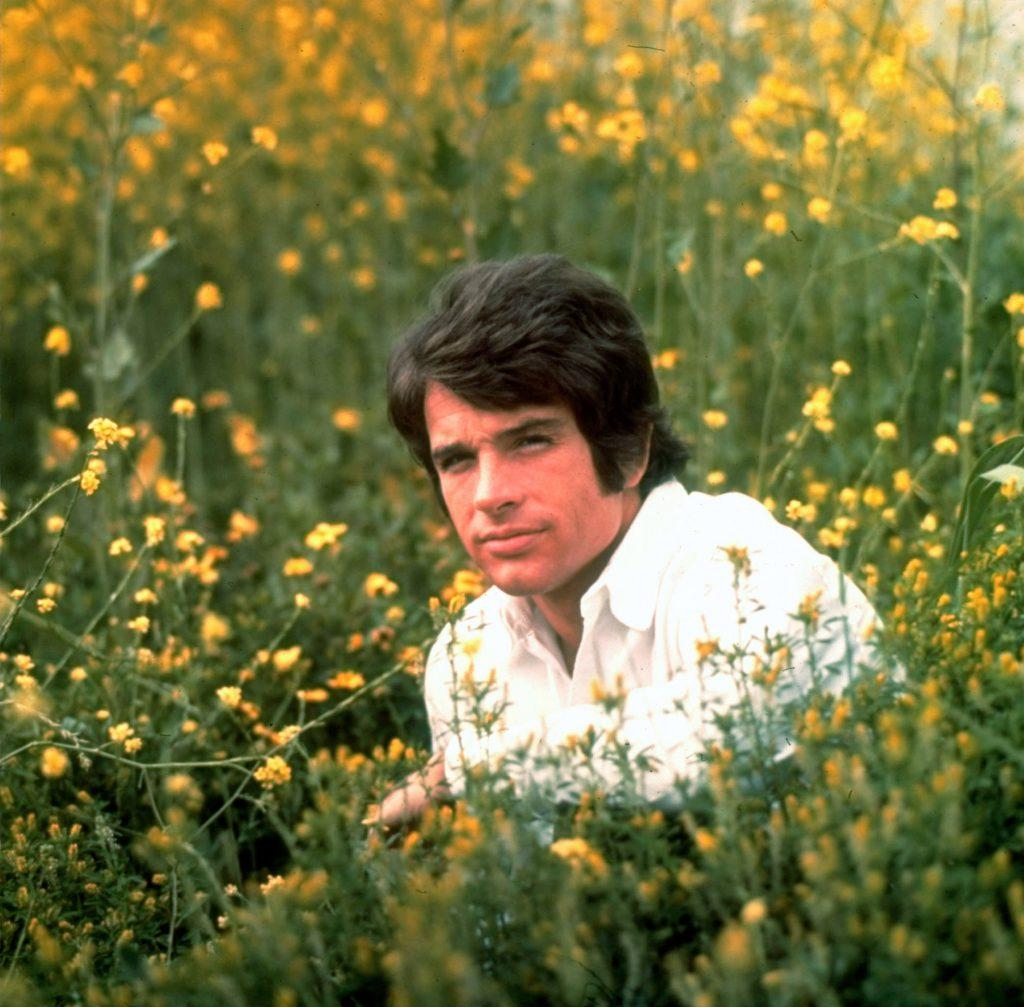 Warren Beatty sitting in field of flowers in 1967.
