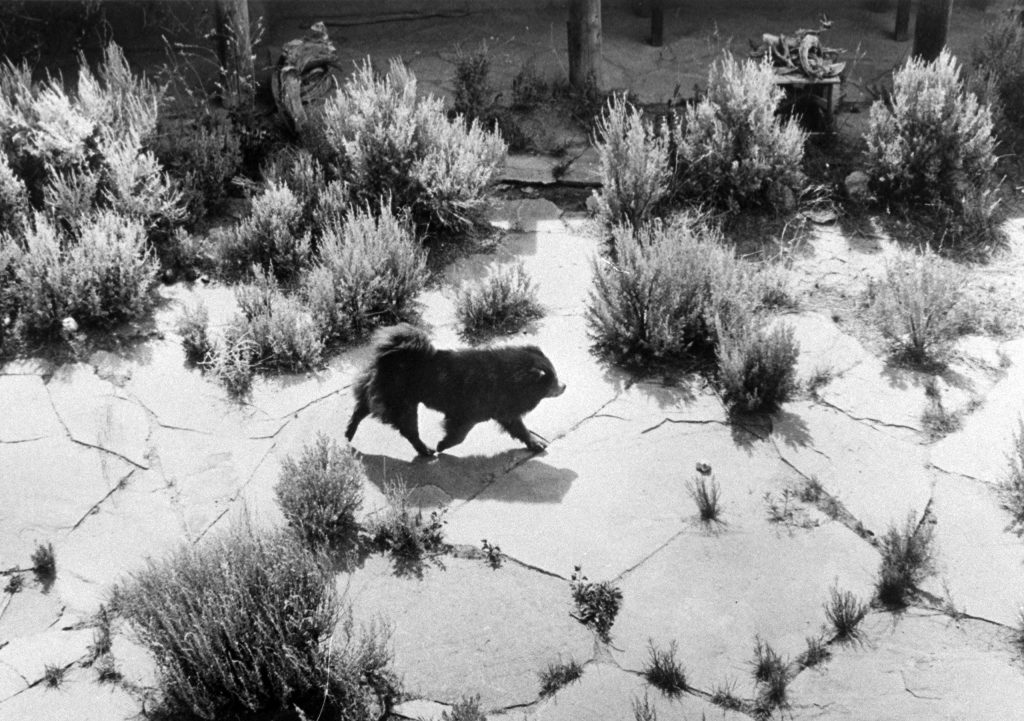 Artist Georgia O'Keeffe at her home in New Mexico, 1968.
