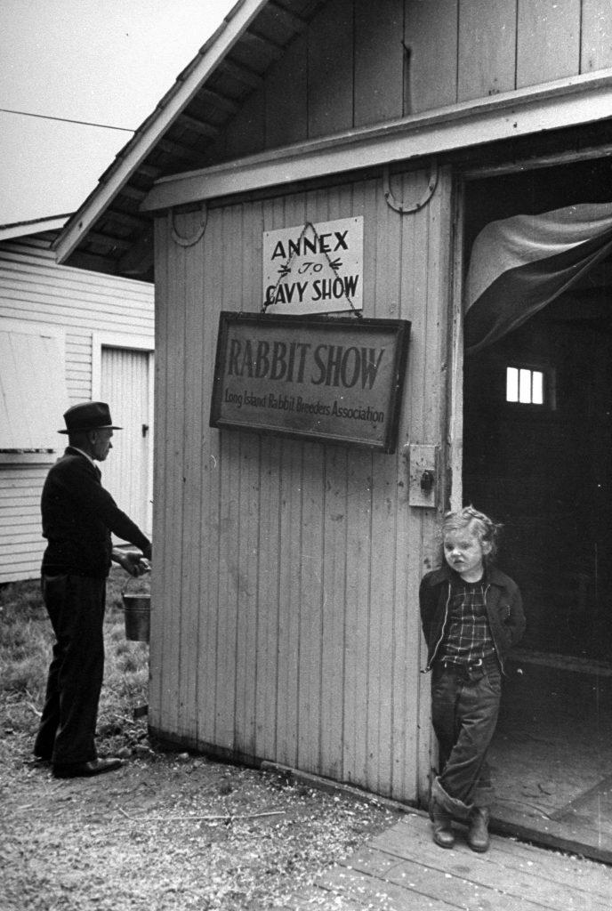 Long Island Rabbit Breeders Association Rabbit show, circa 1943.