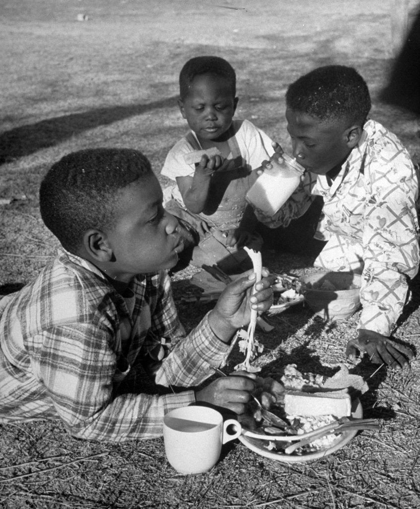 Three young boys eating a Red Cross meal in Arizona, 1950.
