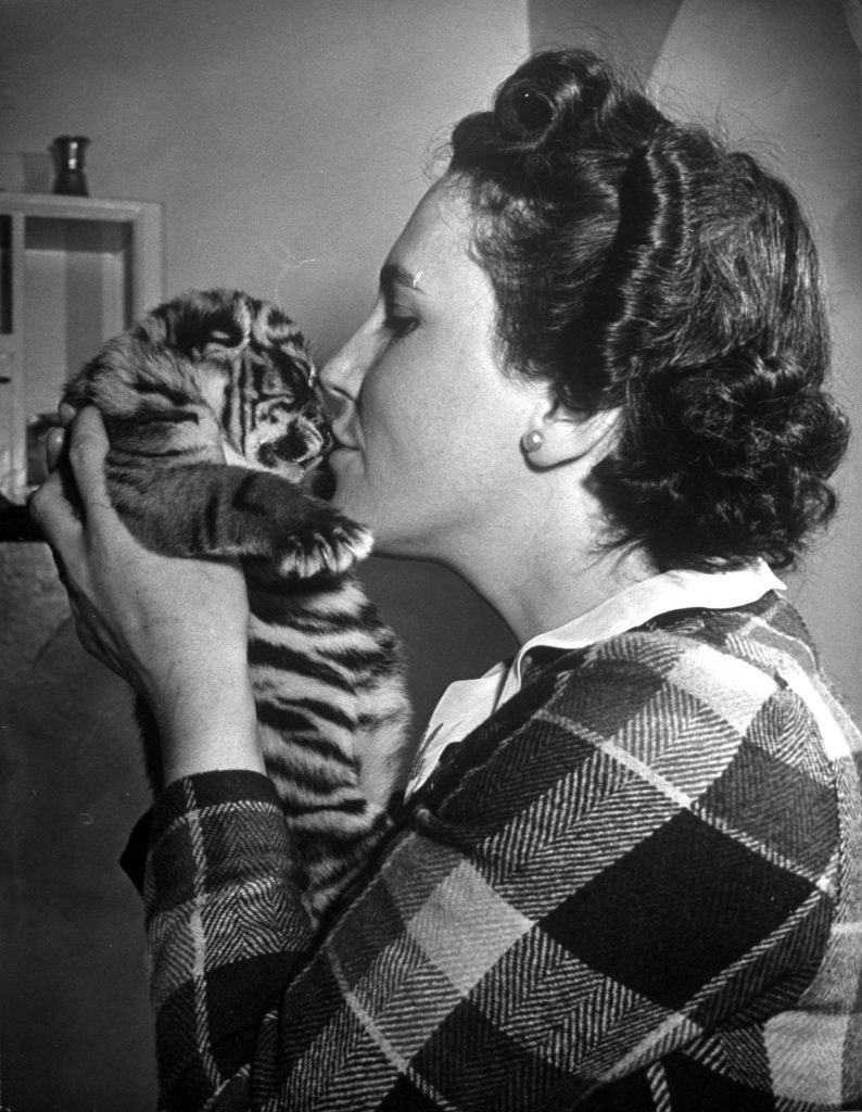 Mrs. Martini, wife of the Bronx Zoo lion keeper, kissing a tiger cub. 1944.