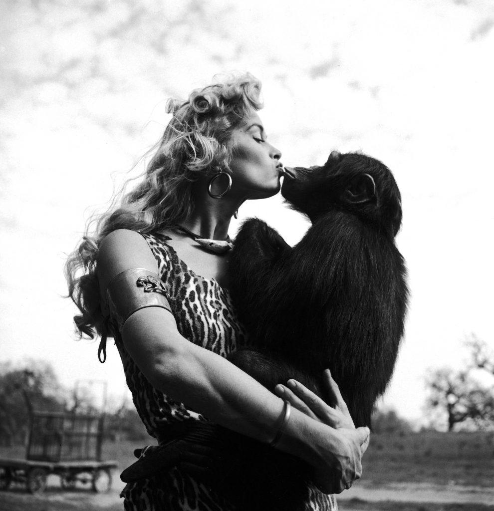 "Irish McCalla as ""Sheena Queen of the Jungle"" kissing her chimpanzee costar. 1955."